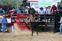 CoomaRodeo2015_2118