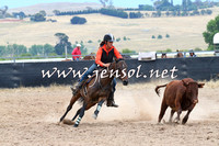 BraidwoodCampdraft2014_2719