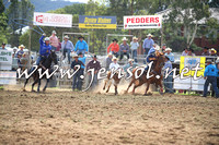 QueanbeyanRodeo2014_0403