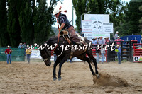 CoomaRodeo2015_2153