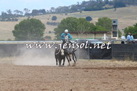 BraidwoodCampdraft2014_1347