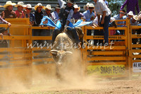 pictonrodeo2013one_0503