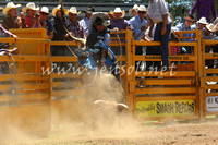 pictonrodeo2013one_0504