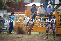 QueanbeyanRodeo2014_0496