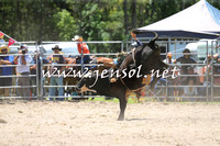 PictonRodeo2015_0513
