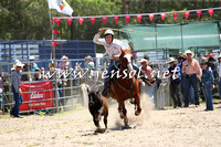 PictonRodeo2015_0028
