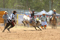 pictonrodeo2013one_0537