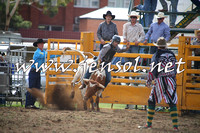 QueanbeyanRodeo2014_0498