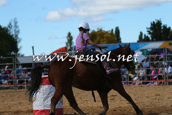 BraidwoodRodeo2015_1332