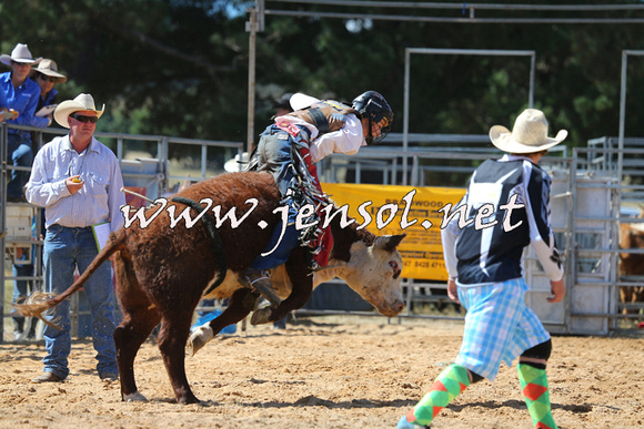 BraidwoodRodeo2015_1644