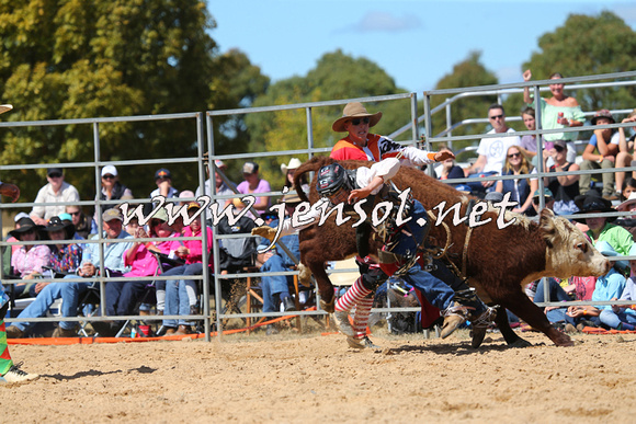 BraidwoodRodeo2015_1684