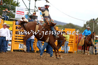 QueanbeyanRodeo2015_2516