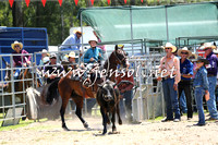 PictonRodeo2015_0031