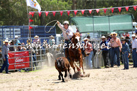 PictonRodeo2015_0027