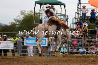 QueanbeyanRodeo2015_2572