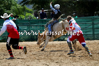 CoomaRodeo2015_0585
