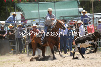 PictonRodeo2015_0049