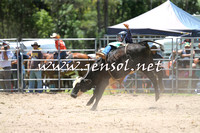 PictonRodeo2015_0515