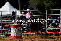 BraidwoodRodeo2015_0684