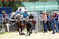 PictonRodeo2015_0033