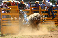 pictonrodeo2013one_0499