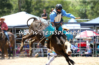 PictonRodeo2015_0532