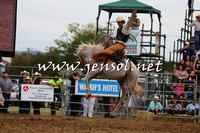 QueanbeyanRodeo2015_2548