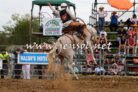 QueanbeyanRodeo2015_2578