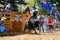 BraidwoodRodeo2015_1784