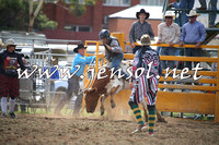QueanbeyanRodeo2014_0494
