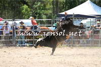 PictonRodeo2015_0514