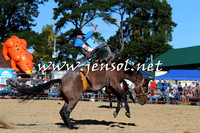 BraidwoodRodeo2015_4125