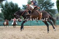 CoomaRodeo2015_2141